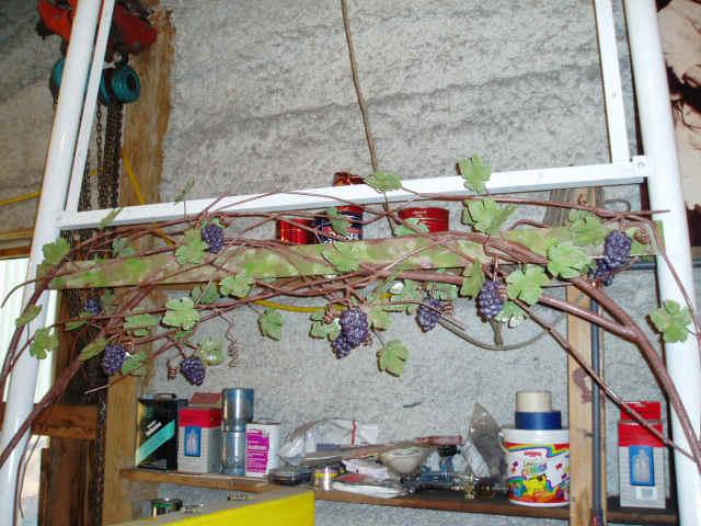 Grape Sign 2