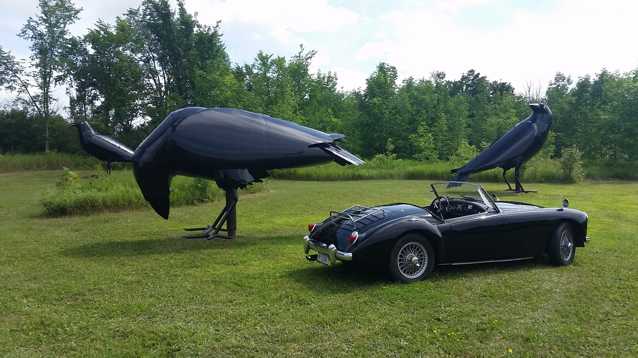1959 MGA with Crows