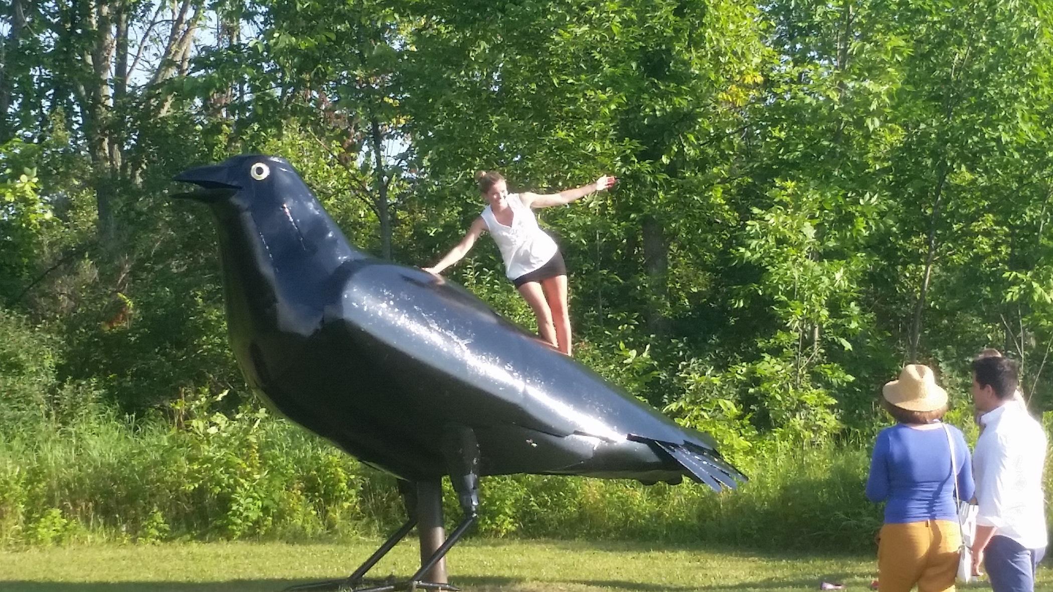Crow Fans