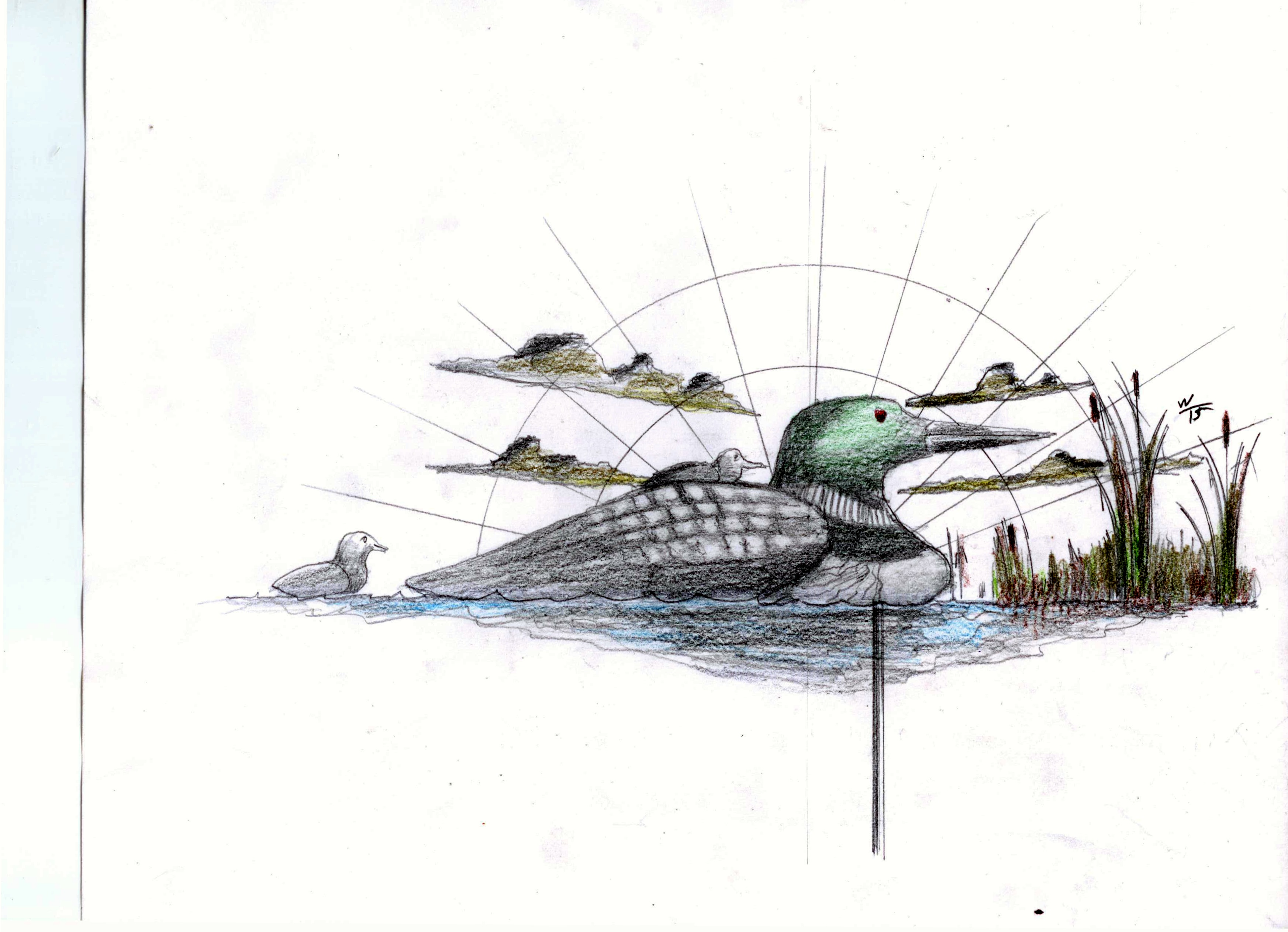 Loon weathervane proposal
