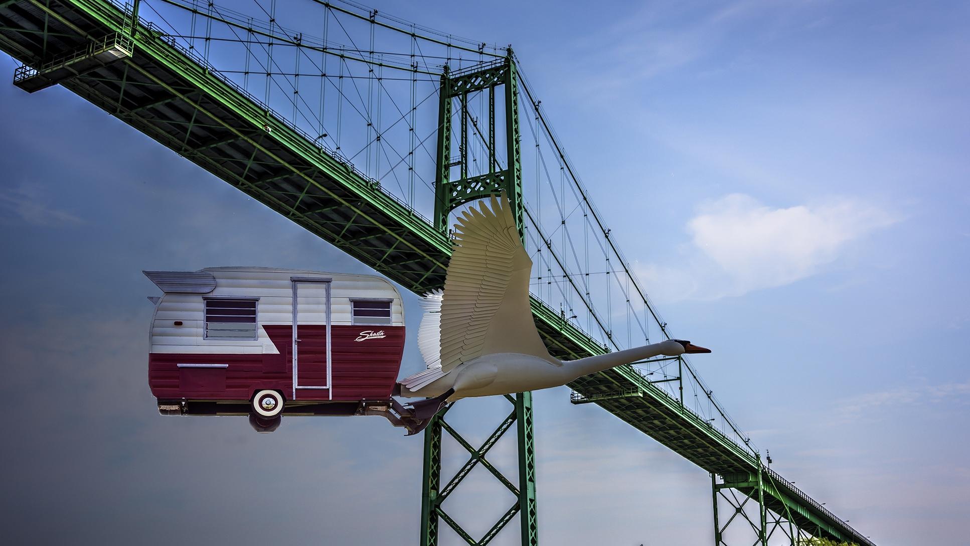 Swan flys under Bridge_2