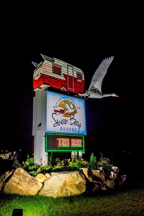 Swan Night 3